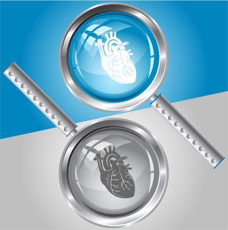 Heart. Vector magnifying glass. Stock Vector - 6846714