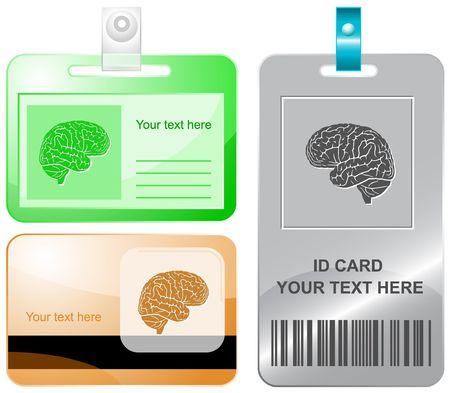 Brain.  id cards. Stock Vector - 6861803