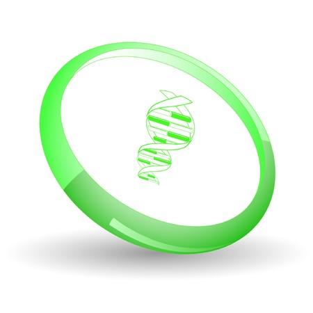 DNA. Stock Vector - 7169957