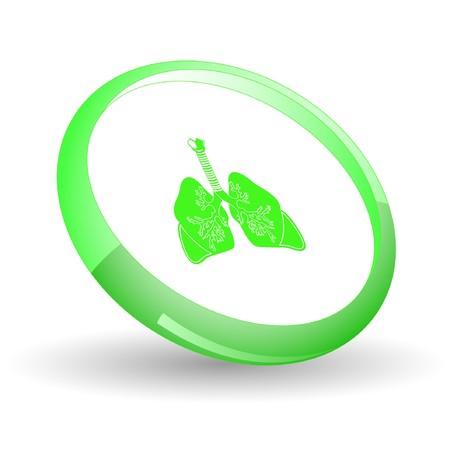 inhaling: Lungs.