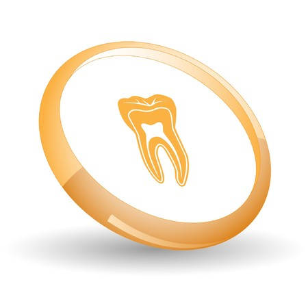 Tooth.  Vector