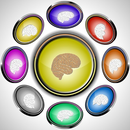 Brain. internet buttons. 8 different projections. Stock Vector - 7262086