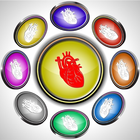 Heart. internet buttons. 8 different projections. Vector
