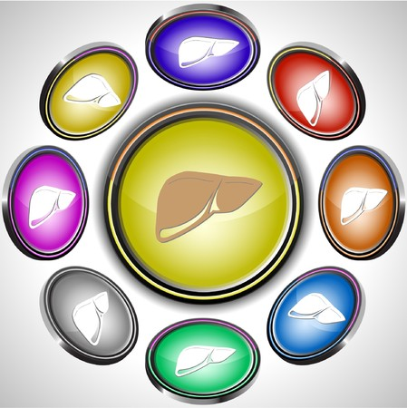 Liver.  internet buttons. 8 different projections. Stock Vector - 7261834