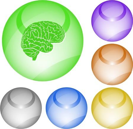 Brain. interface element. Vector