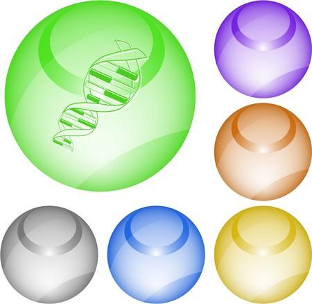 DNA. interface element. Vector