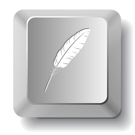 push type: Feather. Vector computer key. Illustration