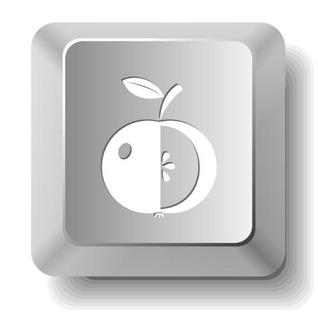 Apple. computer key. Stock Vector - 7522671