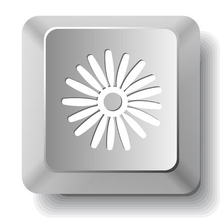 Camomile. computer key. Vector