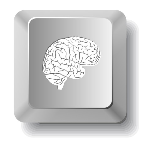 Brain. computer key. Vector