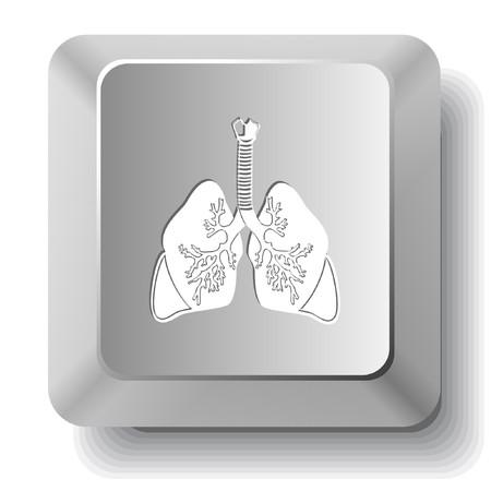 肺。コンピューターのキー。