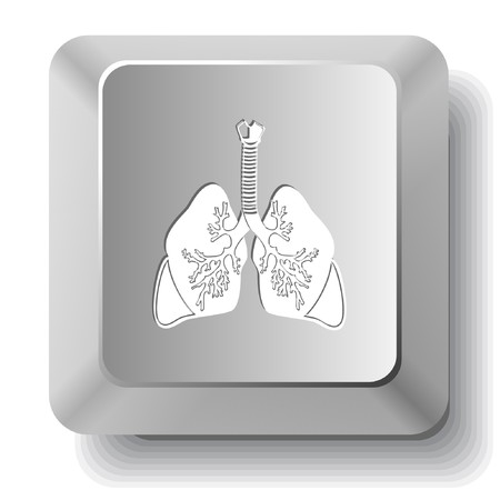 Lungs. computer key. Illustration
