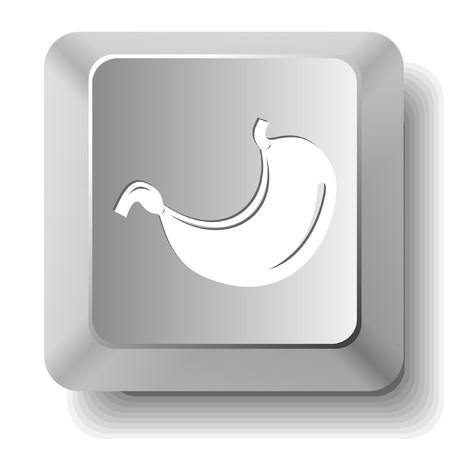 胃。コンピューターのキー。  イラスト・ベクター素材