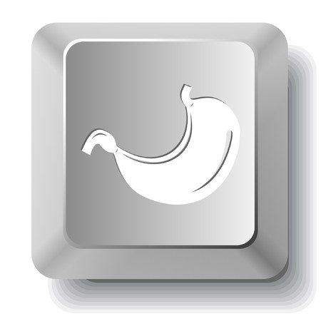 животик: Stomach. computer key. Иллюстрация