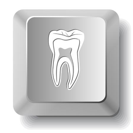 歯。コンピューターのキー。