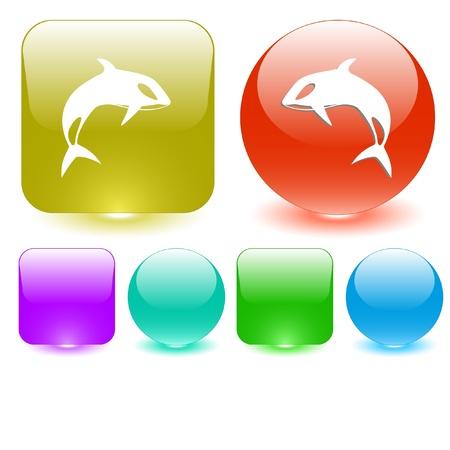 Killer whale. interface element. Stock Photo - 10412913