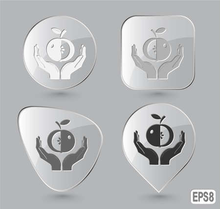apple in hands. Glass buttons. Vector illustration. Stock Illustration - 12920313