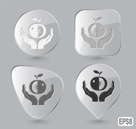 apple in hands. Glass buttons. Vector illustration. Stock Illustration - 12920313