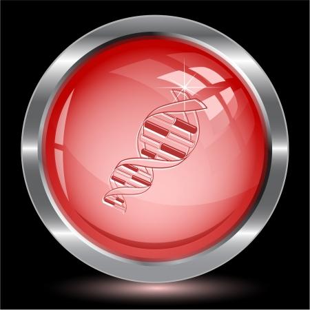 DNA. Internet button. Vector illustration. illustration