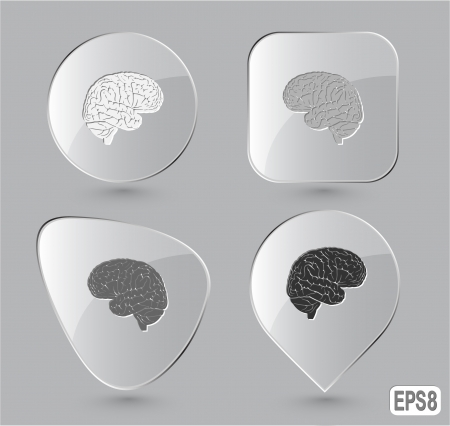 Brain. Glass buttons. Vector illustration. illustration
