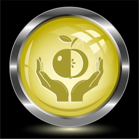 apple in hands. Internet button. Vector illustration. Stock Illustration - 15568333