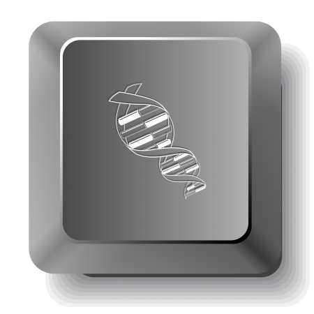 DNA. Vector computer key. photo