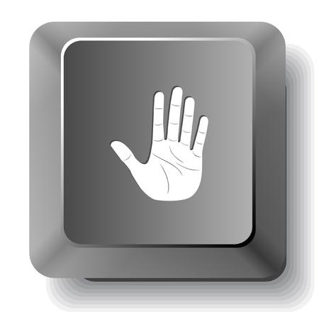 Stop hand. Vector computer key. Stock Photo - 17619591