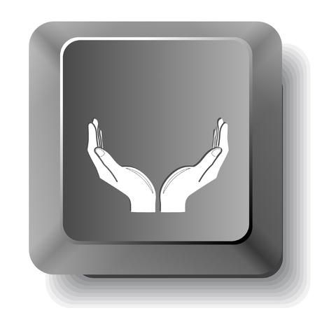 Human hands  Vector computer key  photo