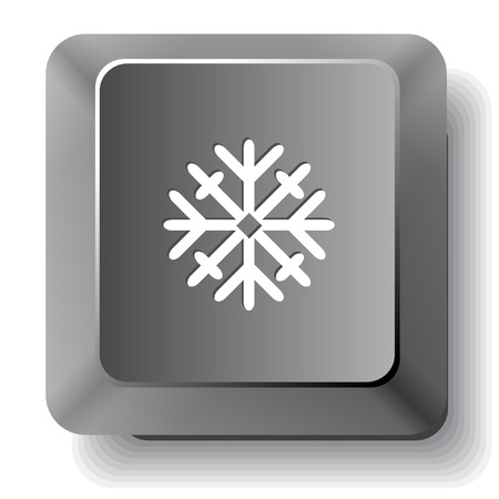 Snowflake  Vector computer key  photo