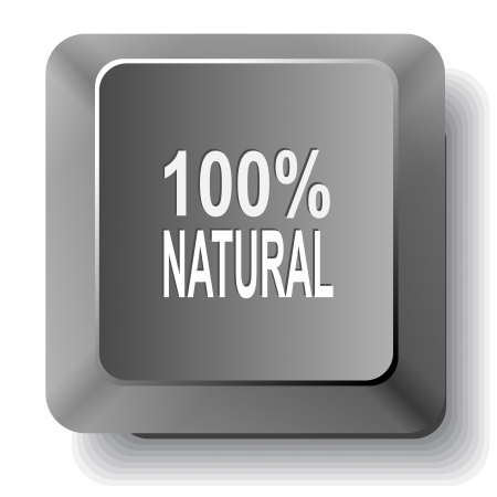 100% natural. Vector computer key. photo