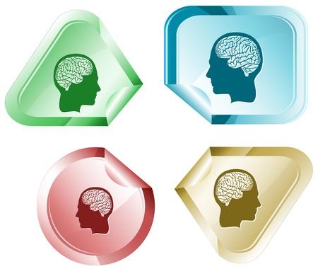 declinate: Human brain. Vector sticker.