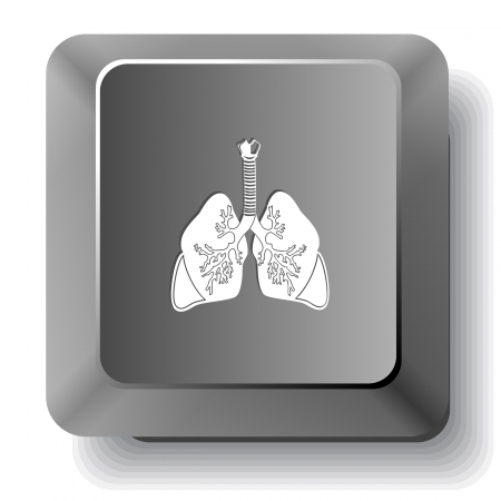inhaling: Lungs. Vector computer key. Illustration