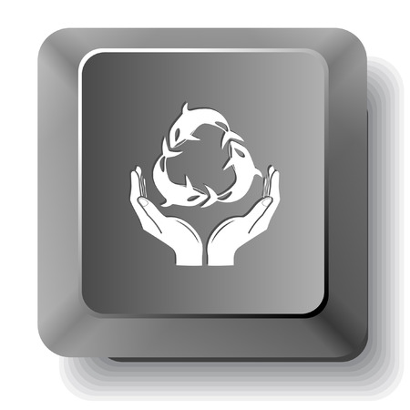 Protection nature. Vector computer key.