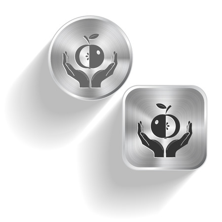 apple in hands. Vector set steel buttons Vector