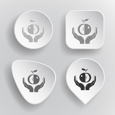 apple in hands buttons on gray background. Vector