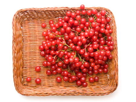 Fresh cranberries in basket isolated on white background photo