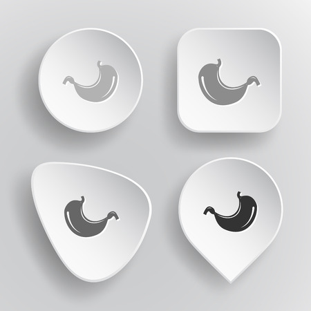 sphincter: Stomach. White flat vector buttons on gray background.