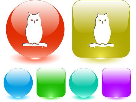 Owl.  Vector