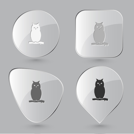 Owl. Glass buttons. Vector illustration. Vector