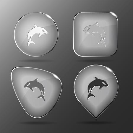 Killer whale. Glass buttons. Vector illustration. Vector