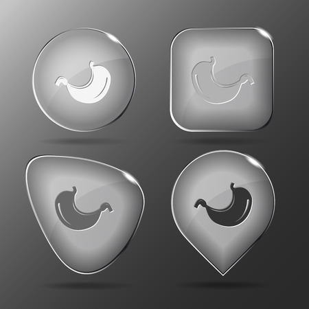 sphincter: Stomach. Glass buttons. Vector illustration.