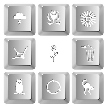 Nature set. Vector set computer keys. Vector