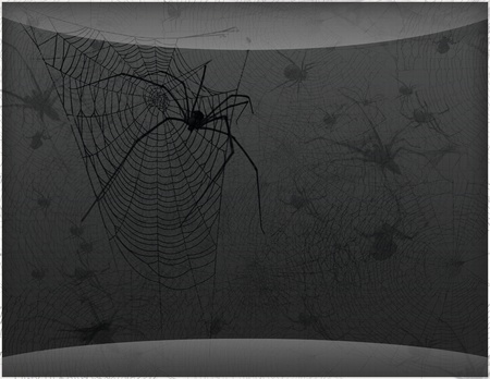muddle: Dark vector background with spider web and spiders