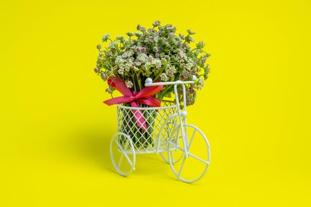 A toy bike carries a flowers. The idea for a postcard. Yellow background. Minimalism.