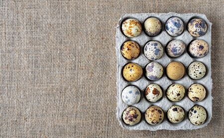 Fresh quail eggs in open cardboard packaging on flaxen background. Top view, copy space.