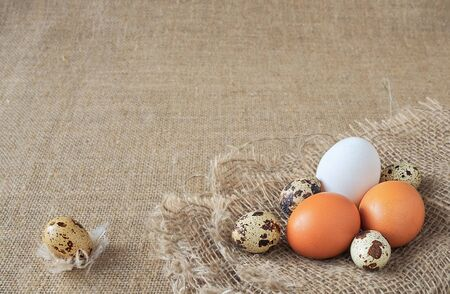 organic quail eggs and brown and white chicken eggs of uncooked freshness nutrition on flaxen brown sack for background texture. soft focus, close-up, copy space