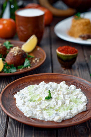 Ali nazik meze, a traditional Turkish dish of yoghurt and eggplant puree topped with a mint leaf. Side dish for kebab in a clay plate on a wooden background. Close-up, table setting.