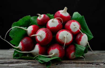 fresh organic bunch of radishes on a wooden vintage table. harvesting, seasonal vegetables from the farm. Close-up