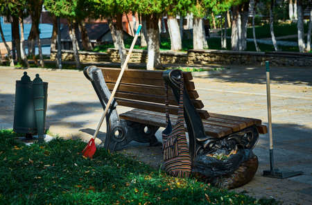Cleaning in autumn park, close-up with copy space Banco de Imagens
