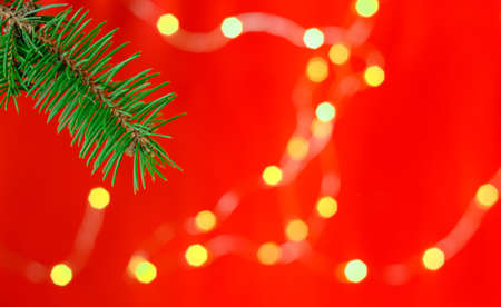 Festive Christmas card with a branch of a Christmas tree on a bright red background, decorated with a garland, selective focus. Christmas or New Year template for banner or postcard, close-up